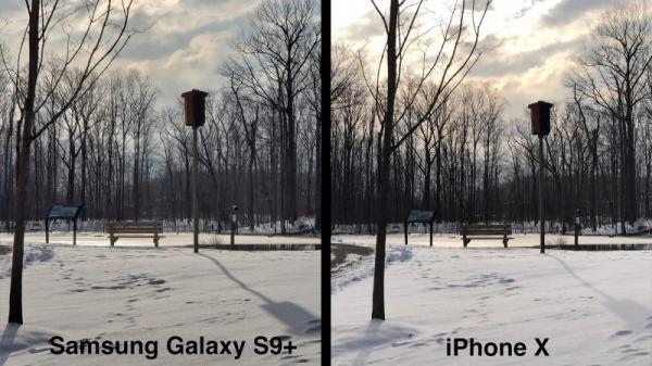 photo image iPhone X vs. Galaxy S9+: Which Smartphone Has a Better Camera?